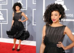 Red Carpet Fashion at the Grammy�s