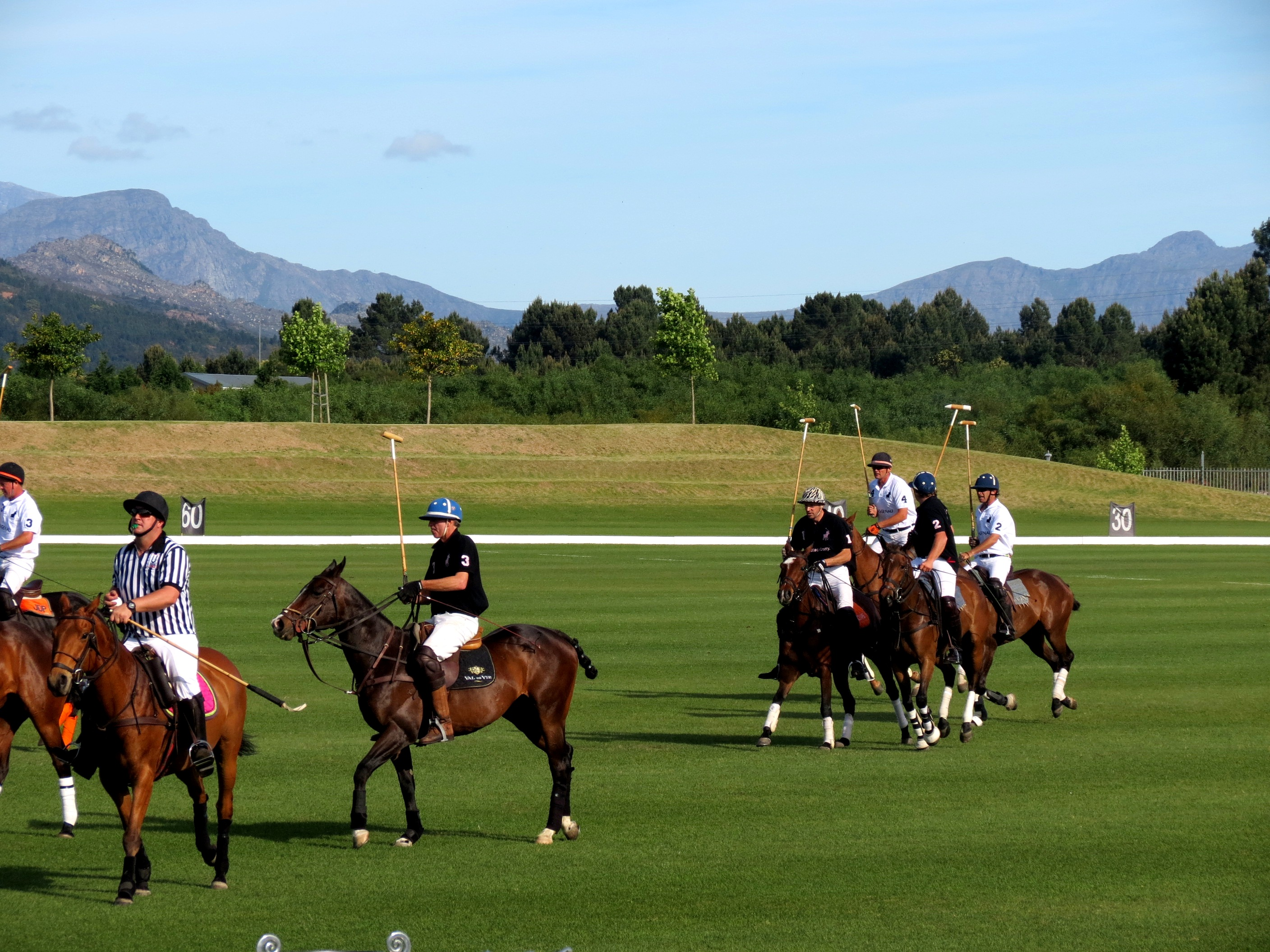 Blackberry pink polo at Val de Vie Estate 2012