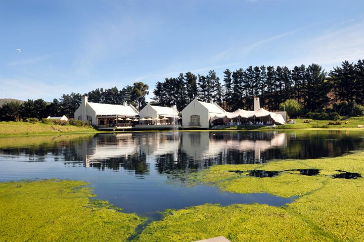 Win a valentines date with Nitida